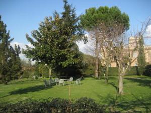 giardino (12)