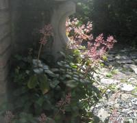 IMG_6476